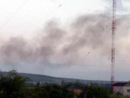 Sătenii din Rontău, terorizaţi de ţiganii care aruncă gunoaie peste tot, iar seară de seară incendiază mormane de flacoane şi zdrenţe (FOTO / VIDEO)