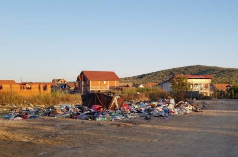 Nu s-a schimbat nimic! Localnicii din Rontău acuză că ţiganii continuă să dea foc gunoaielor, pe câmpul de la marginea satului (VIDEO)