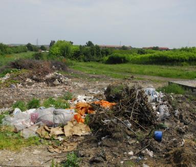 """Lipsă acută de voluntari în proiectul de curăţenie generală """"Let's Do It, Bihor"""""""