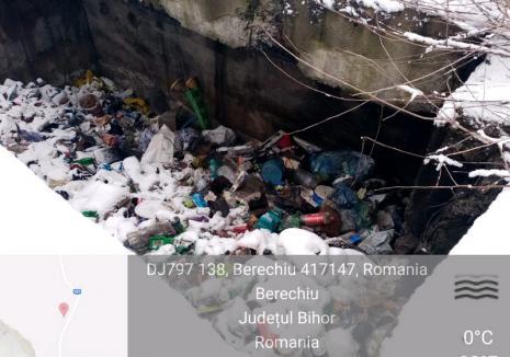"""Groapa """"morţii"""" din Berechiu a intrat şi în atenţia Gărzii de Mediu Bihor: Proprietara, o agenție a statului, a încasat o amendă de 40.000 lei (FOTO)"""