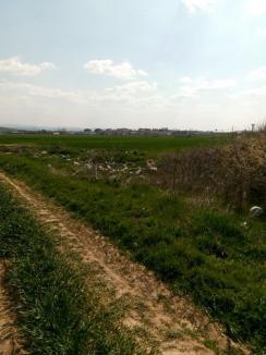 Ne enervează: Oraşul Marghita, înconjurat de gunoaie (FOTO)