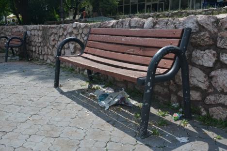 Mizerabil! Parcul Magnoliei din Oradea este plin de gunoaie, pentru că Primăria n-are contract de curăţenie (FOTO)