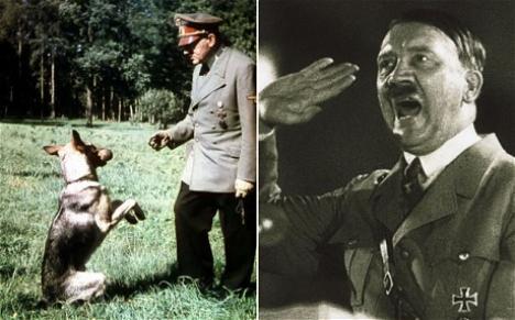 Naziştii au dresat câini să vorbească şi să scrie!