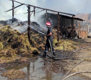 Şopron distrus de o mână criminală, în Ţeţchea: Au ars 15 tone de fân şi 5 metri cubi de lemne (FOTO)