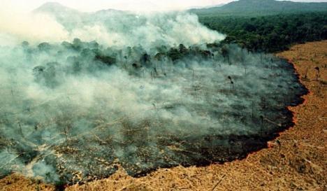 Catastrofă ecologică: Pădurea amazoniană este în flăcări de peste două săptămâni. Focul ar fi fost pornit de fermieri (FOTO / VIDEO)