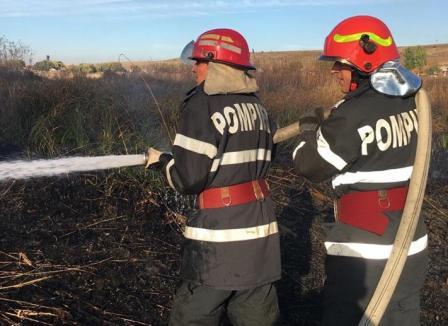 45 de hectare de terenuri virane din patru sate, cuprinse de flăcări (FOTO)