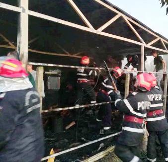 Pompierii bihoreni au salvat 17 animale dintr-un incendiu