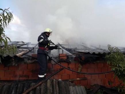 Incendiu în Albiş: 9 purcei au ars de vii, după ce flăcările au cuprins un adăpost de animale (FOTO)