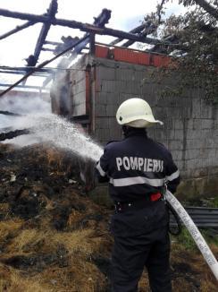 Foc în Alparea! Pompierii au intervenit pentru a stinge un incendiu violent într-o gospodărie(FOTO / VIDEO)