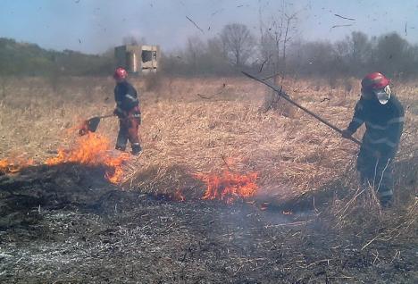 Sărbătoare... înflăcărată: Trei incendii pe terenuri virane, în a doua zi de Paşte, în Bihor