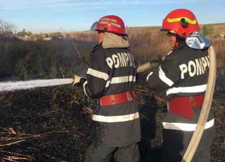 Nu vă jucaţi cu focul! 14 incendii de vegetație uscată în doar două zile, în Bihor