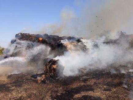 Incendiu la Căminul Felix: 600 de baloţi de paie s-au făcut scrum, din pricina unei ţigări (FOTO)