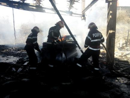Intervenţie dificilă: Pompierii au oprit un incendiu violent în Cordău, care risca să distrugă două locuinţe