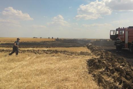 50 de hectare de grâu, arse într-un incendiu uriaş