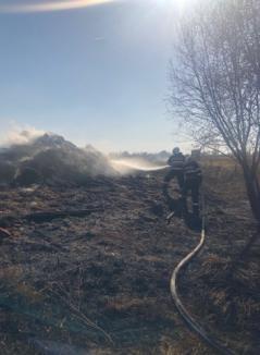 Incendiile de vegetaţie, o ameninţare reală. La Diosig, flăcările de pe câmp s-au apropiat periculos de case (VIDEO)