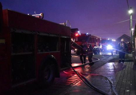 Incendiu la o fabrică de peleți din Bihor