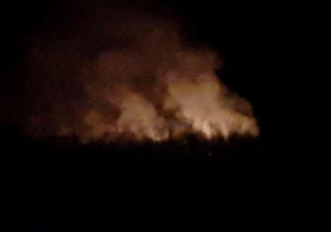 Foc în zona pădurii din Husasău de Criş. Au ars aproximativ 300 de metri pătrați de vegetaţie uscată