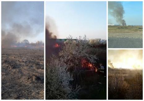 Incendiu întins pe mai bine de un hectar, în spatele Parcului Industrial 1 din Oradea (FOTO / VIDEO)