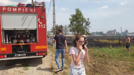 Incendiu de proporţii în Nojorid: Au ars un utilaj agricol, baloți de paie, 10 stupi de albine și vegetație uscată pe zeci de hectare (FOTO / VIDEO)