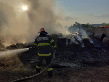 Incendiu violent în Bihor: Două persoane au fost rănite, iar 62 de animale au ars (FOTO)