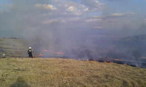 Pompierii fac apel către bihoreni: Nu mai daţi foc terenurilor!