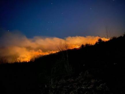 Foc în Parcul Natural Apuseni: De o săptămână, incendiile de vegetaţie uscată mistuiesc terenurile de lângă Pietroasa (FOTO)