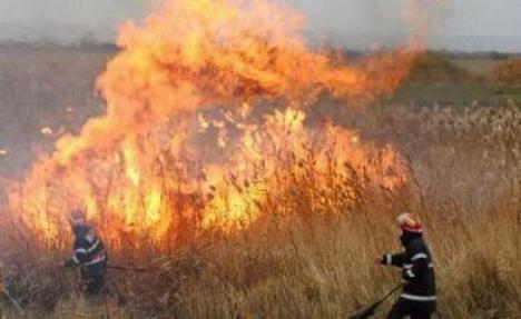 Zece incendii de vegetaţie în patru zile în Bihor