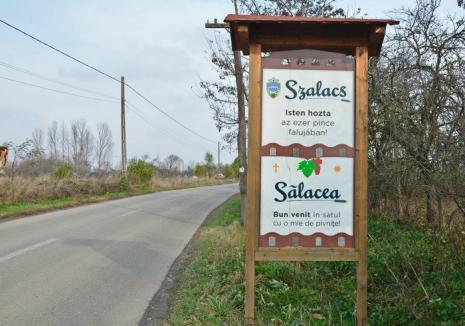 Weekend plin la Sălacea: Vezi aici programul complet de la Zilele Satului!