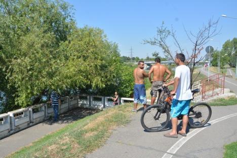 Femeie înecată în Crişul Repede, în zona străzii Sovata (FOTO/VIDEO)