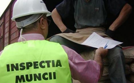 Amenzi de aproape un milion de lei pentru 49 de firme din Bihor prinse cu aproape 800 de angajaţi fără forme legale