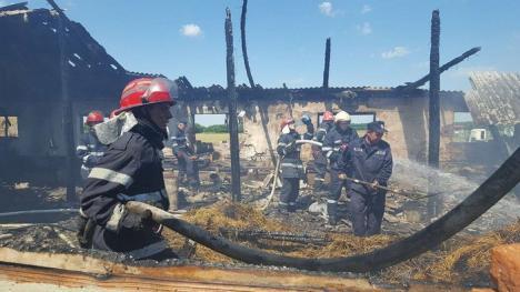 Incendiu în Miersig: Patru capre au ars de vii, într-un adăpost mistuit de flăcări (FOTO)
