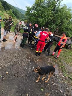 Ploile torenţiale au provocat inundaţii în Bihor. Mai multe persoane salvate de pompieri (FOTO / VIDEO)