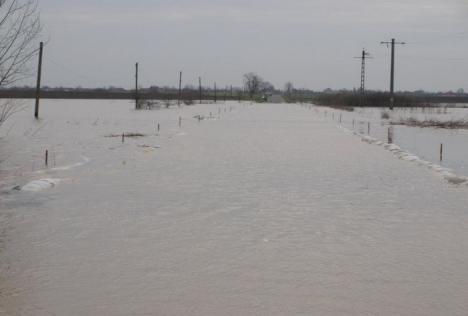 Cod galben de inundaţii in Bihor