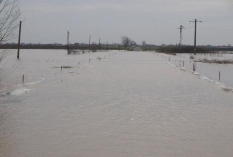 Cod PORTOCALIU de inundaţii în Bihor!