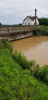 Bihorul sub apă: Crişul Negru a înregistrat un nivel record, de aproape 3 metri! Zeci de gospodării au fost inundate (FOTO)