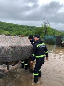 Inundaţii în Bihor: Mai multe gospodării din zona Beiuş, afectate de ape. Două râuri au depăşit cotele de pericol, precipitaţii record la Stâna de Vale (FOTO / VIDEO)