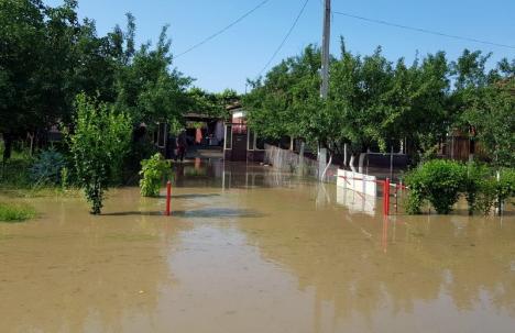 Pompierii bihoreni au continuat, vineri, evacuarea apelor din case, beciuri şi curţi, în 10 localităţi
