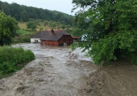 Cod galben de viituri, pe râuri din județul Bihor