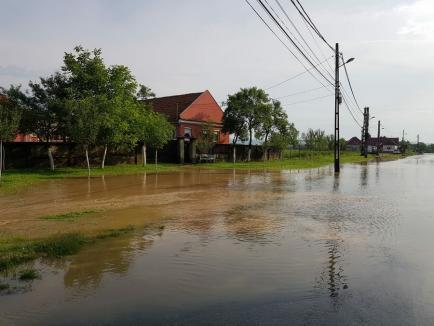 Prefectura Bihor cere primăriilor să identifice construcțiile din zonele inundabile. Proprietarii, obligați să-și asume riscurile