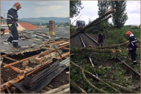 Vântul provoacă pagube în Bihor: Acoperişul unui bloc a căzut peste 3 maşini, un copac doborât a blocat circulaţia trenurilor (FOTO)