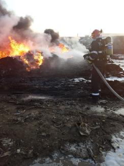 ISU Crişana: Incendiul din Nojorid a fost stins, cauza nu a fost încă stabilită (FOTO / VIDEO)