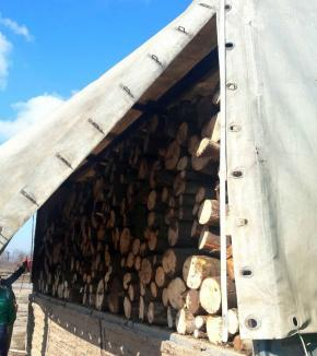 Un camion plin cu lemne fără acte, confiscat de Jandarmeria Bihor
