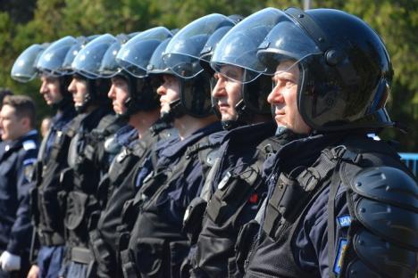 Se întâmplă în România! Jandarmi atacaţi de hoţii de lemne