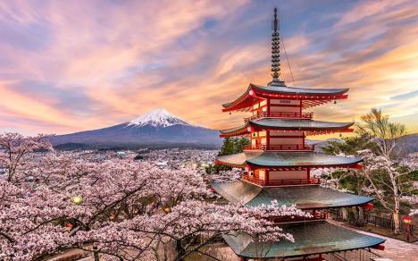 Eşti funcţionar public? ANFP te trimite să studiezi gratuit în Japonia