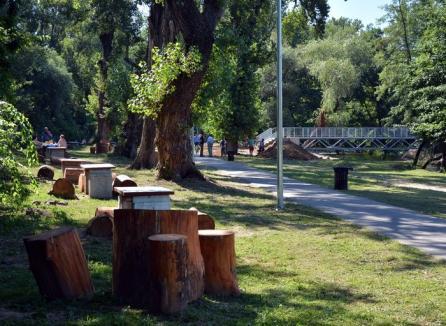 Bolojan îi copiază româneşte pe japonezi: Conferinţă Kaizen, urmată de curăţenie în parcul Silvaş... deja salubrizat