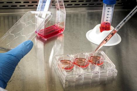 Coronavius în Bihor: Peste 82% dintre pacienţii infectaţi s-au vindecat. Un singur caz depistat în ultimele 24 de ore