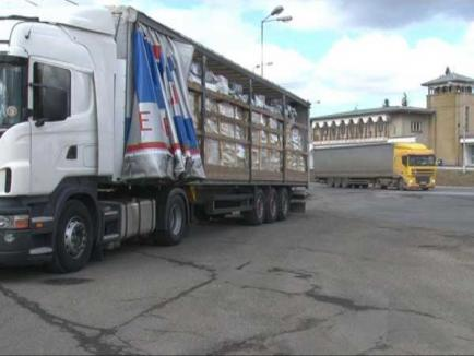 Peste 250 de metri cubi de lemne cu acte false, descoperite de poliţişti în 2011