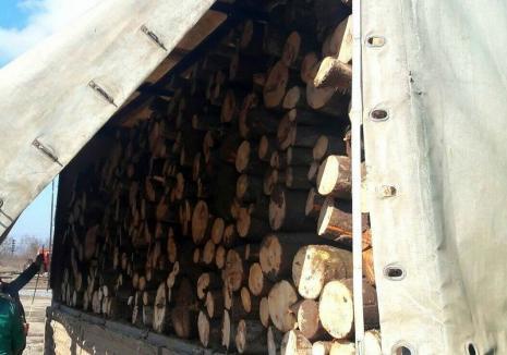 Transport de lemne cu acte dubioase, confiscat în Bihor