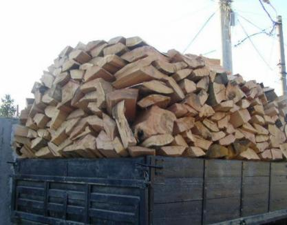 """A încercat să iasă din ţară cu 20 de metri cubi de lemne, pe baza unor acte """"refolosibile"""""""