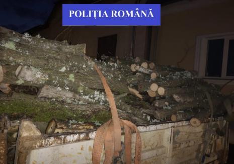 Hoţ de lemne prins în flagrant într-o pădure din Finiş. Până să-l dibuiască poliţiştii, omul a tăiat 17 arbori